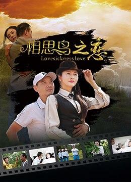 《相思鸟之恋》2019年中国大陆剧情,爱情电影在线观看