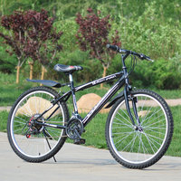 High Quality 26 Inch 18 Speed Thickened Size Mountain Bike High Carbon Steel MTB Road Bicycle