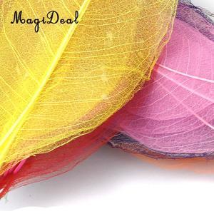 Image 2 - 50 Stuks Natuurlijke Magnolia Skelet Blad Bladeren Kaart Scrapbooking Diy Gemengde Kleur Gebruikt Om Versieren Kaarten Kaarsen Pakketten
