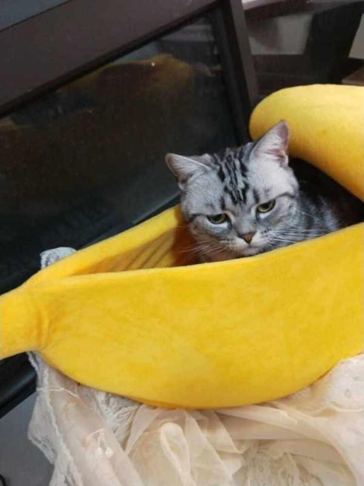 Muz kedi yatak ev sevimli muz köpek yastık kulübesi sıcak yumuşak Pet bahis kedi malzemeleri Mat yatak kediler için yavru kedi
