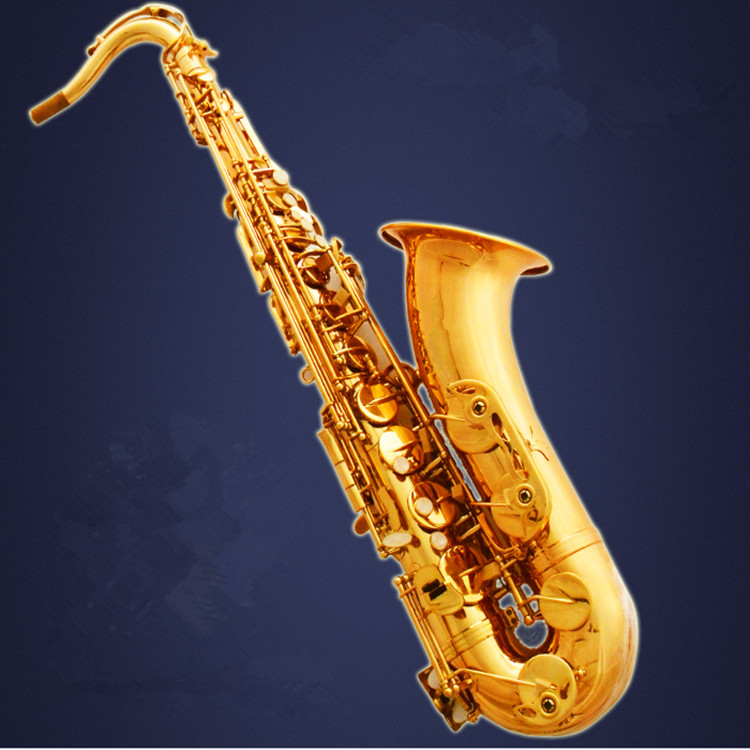 High-quality Tenor Sax Bb SELMER STS-R54 golden tenor saxophone Musical Instruments The accessories are complete Free shipment. tenor saxophone 2018 hot selling high grade sts r54 bb tenor sax black saxophone golden perfect quality free shipping