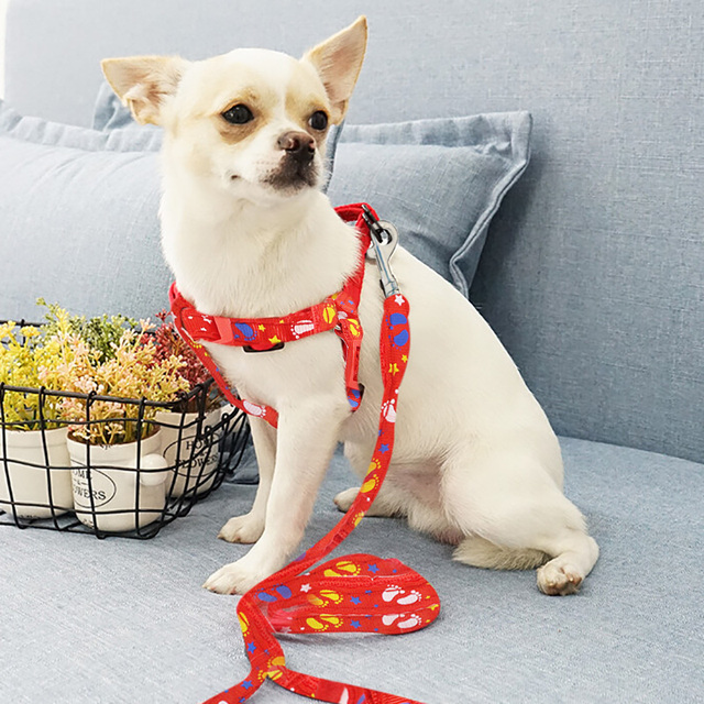 Funny Printed Dog Harness for Small Dogs
