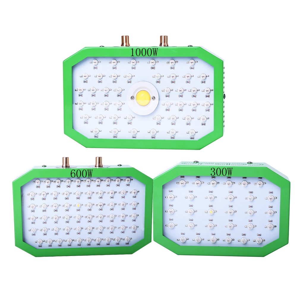 300W 600W 1000W 1100W LED Grow Lights Full Spectrum Plant Growth Light For Indoor Seedling Greenhouse Hydroponic Tent Phyto Lamp