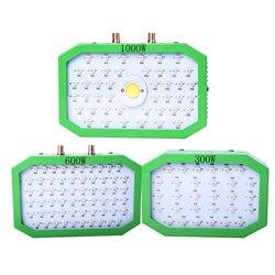 300W 600W 1000W 1100W LED rosną światła pełne spektrum wzrostu roślin światło dla kryty sadzonka cieplarnianych hydroponicznych namiot phyto lampa