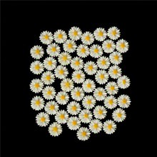 50 Pieces 13mm DIY White Daisy Flower Resin Flatback Cabochon Jewelry Phone Decoration No Hole Home Decor