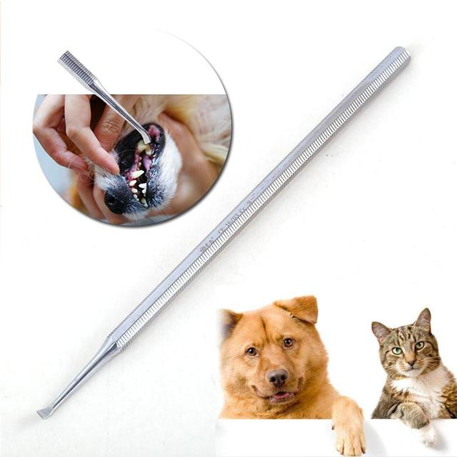 Dog Tooth Care Tool