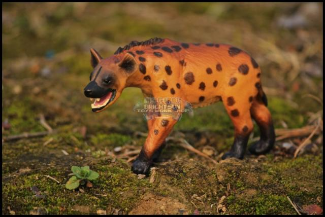 Image of: Safari Papo Wild Animal Model Toy Hyena Aliexpress Papo Wild Animal Model Toy Hyena In Papo Wild Animal Model Toy Hyena