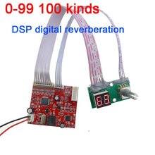 0 99 100 종류의 효과 DSP 디지털 잔향 모듈 Cara OK 보드 믹서