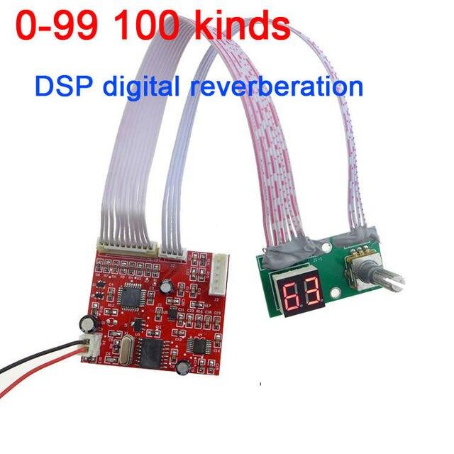 0 99 100 çeşit etkisi DSP dijital yankı modülü Cara OK kurulu mikser
