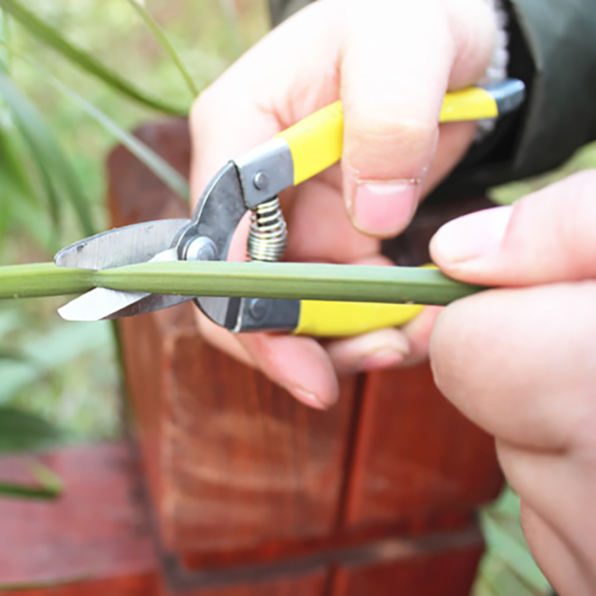 Stainless Steel Cutting Tools Tree Flower Cutter Shears Anti-slip Gardening Pruning Shear Scissor Handheld Plant Pruner