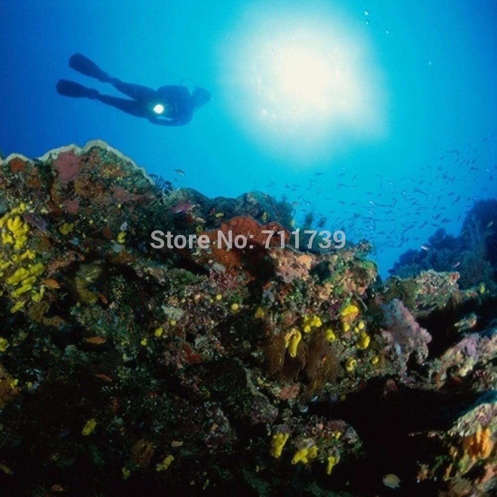 L2 LED diving flashlight (8)