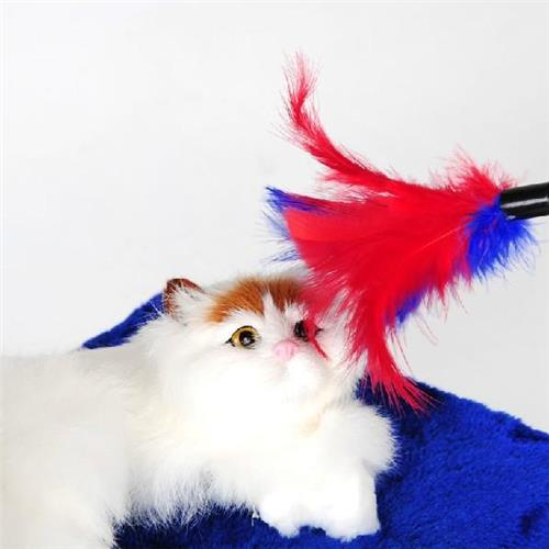 Funny Cat Toy Color Vary Feather Wand Rod Cat Stick Toy with Bell Teaser and Exerciser Wands for Cat and Kitten Playing Accessor