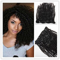 Afro Kinky Curly Hair Clip In Human Hair Extensions 3B 3C Curl Lima Peru Hair Clip Ins Extension 10PC 180G 220G Set Clip On In