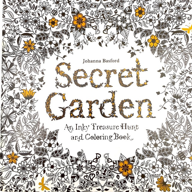 1 PC Secret Garden Adult Coloring Book 96 Pages 185185cm Designs Stress