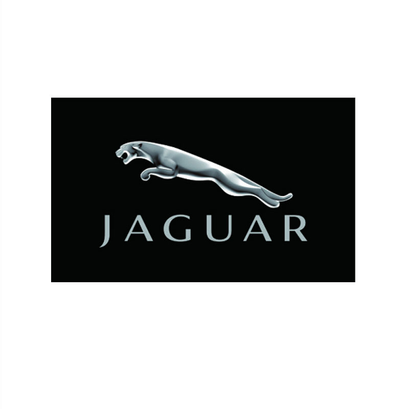 New Flag For Jaguar Racing Banner Flags 3ft x 5ft 90x150cm Free Shipping