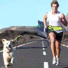 Jogging Dog Leads
