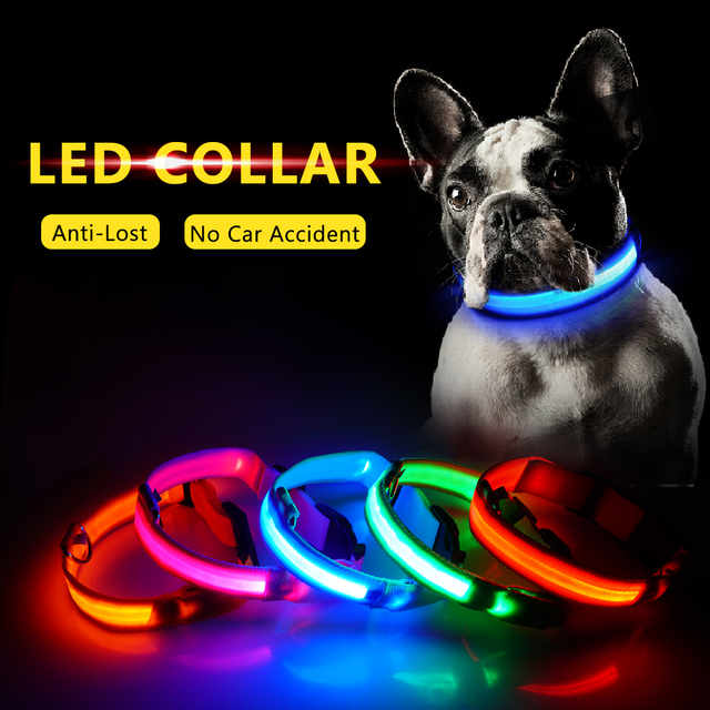USB Charging LED Dog Collar Anti-Lost Avoid Car Accident For Dogs Puppies