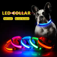 Di Ricarica USB Led Collare di Cane Anti-Perso/Evitare Incidente D'auto Collare Per Cani Cuccioli di Cane Collari Porta LED forniture Prodotti per animali domestici
