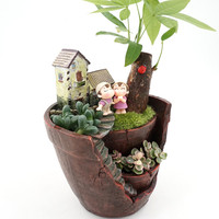 Free Shipping 1Pcs Creative Resin Flower Pot For Succulent Plants Flowerpot Micro Landscape Pot Garden Decoration