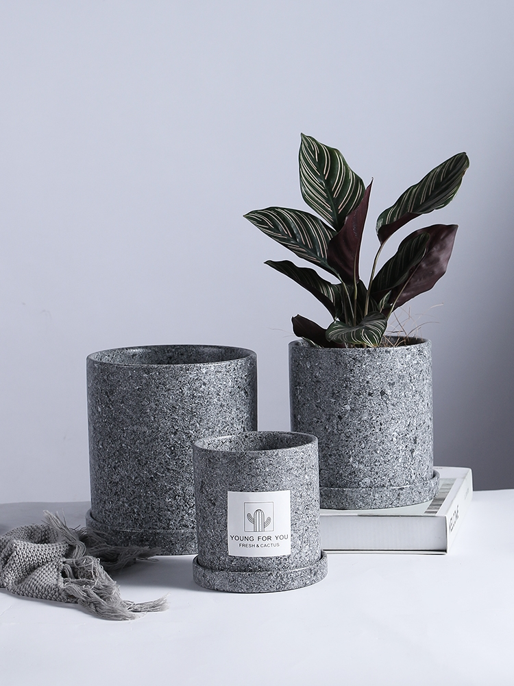 Nordic Simple Solid Color Succulents Pot Plant Pot With Tray Ceramic Plant Pots Home Office Christmas New Year Decoration