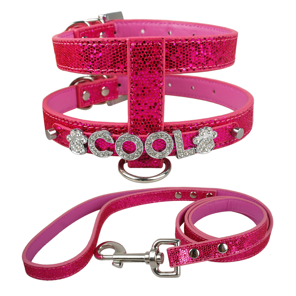5 Colors Free Name PU Leather Dog Harness and leash set Personalized ...