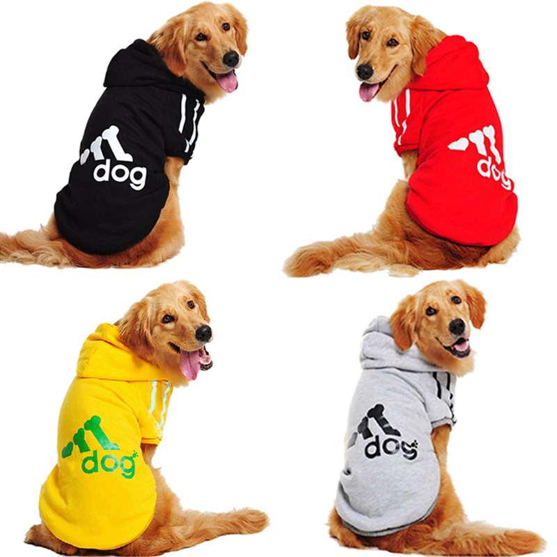 Sweater, Pitbull, Coat, Dogs, Outfits, Retriever