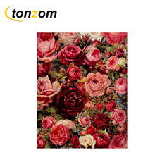 RIHE Blooming Red Rose Drawing By Numbers Bunch Of Flowers DIY Painting Handwork On Canvas Oil Art Coloring For Home