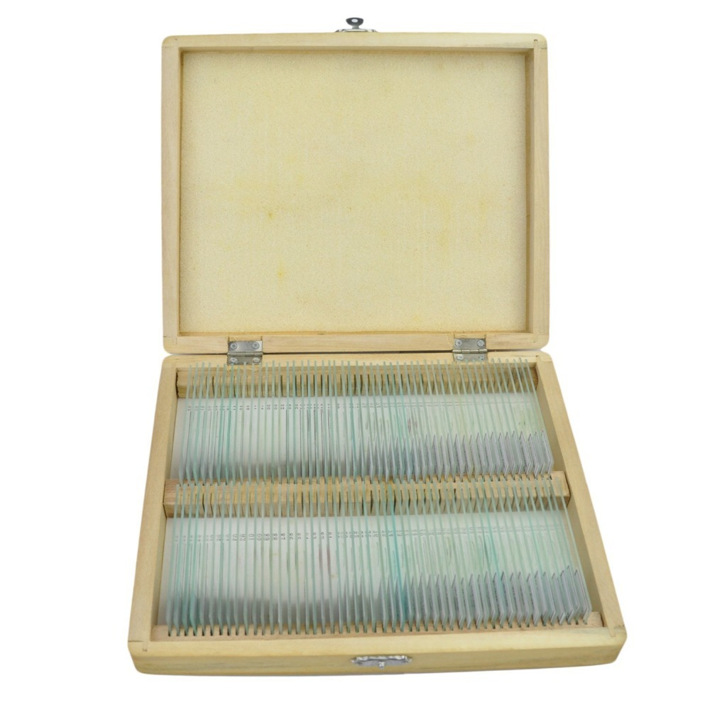 100pcs Prepared Slides Set- Plastic Box Casing-Microscope Biological Prepared Slides High Quality Specimens telescope fixed set teaching resources university students study 78pieces medical parasite prepared microscope slides