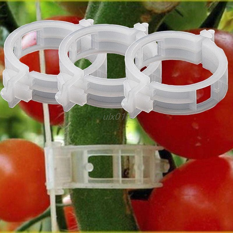 10Pcs Tomato Clips Trellis Vegetable Binder Twine Garden Plant Support 24mm July1 Whosale&DropShip