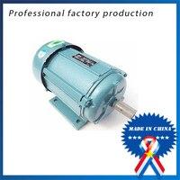 250w 220V 1400 2800r Min Single Phase Copper Wire Motor
