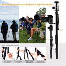 Professional Camera Tripod Aluminum alloy Photo Tripod with Ball Head Quick Release Plate for Canon Nikon Sony Simga Tamron DV
