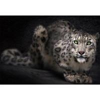 5D Diy Diamante Pintura Leopard Animal Imagens De Strass Embroidery Quadrado Bordado Ponto Cruz Casa Decoracao