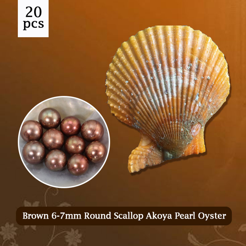 цены 20pcs Brown Red Orange Oysters with Pearls, Charismatic Beads for Jewelry Making 6-7mm, AAA Grade Vacuum-packing PJW286