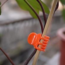 100ks 1,5 * 2 * 2cm Phalaenopsis Květinová spona Vícebarevná zahradní potřeby Klipy Květinové řemínky Klíčenka