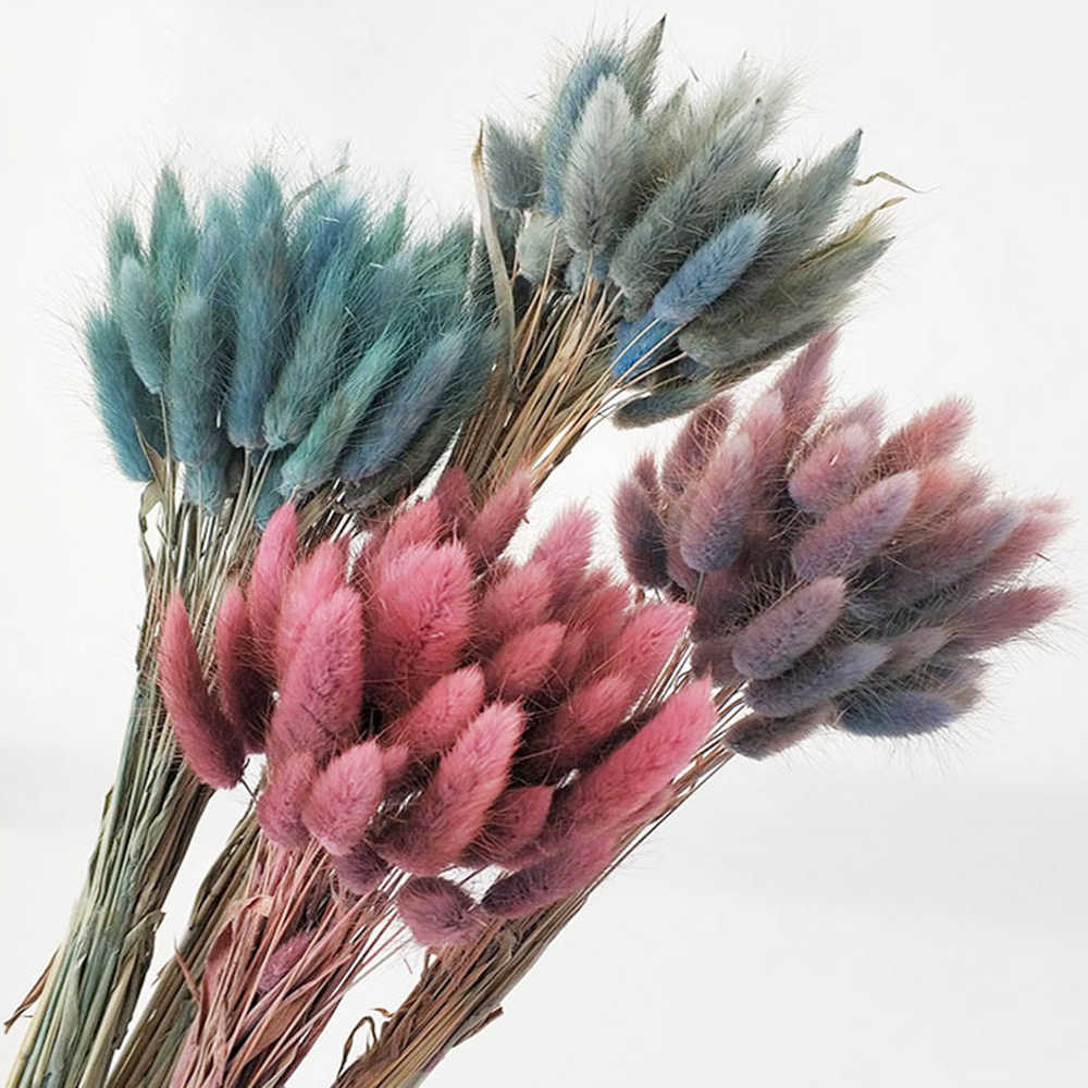 Natural Dried Flowers Bouquets Bunny Tails Rabbit Tail Grass Lagurus Ovatus HOT!