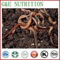 Горячие Продажи Природного Earthworm Extract Протеиновый Порошок 200 г/лот Низкая цена