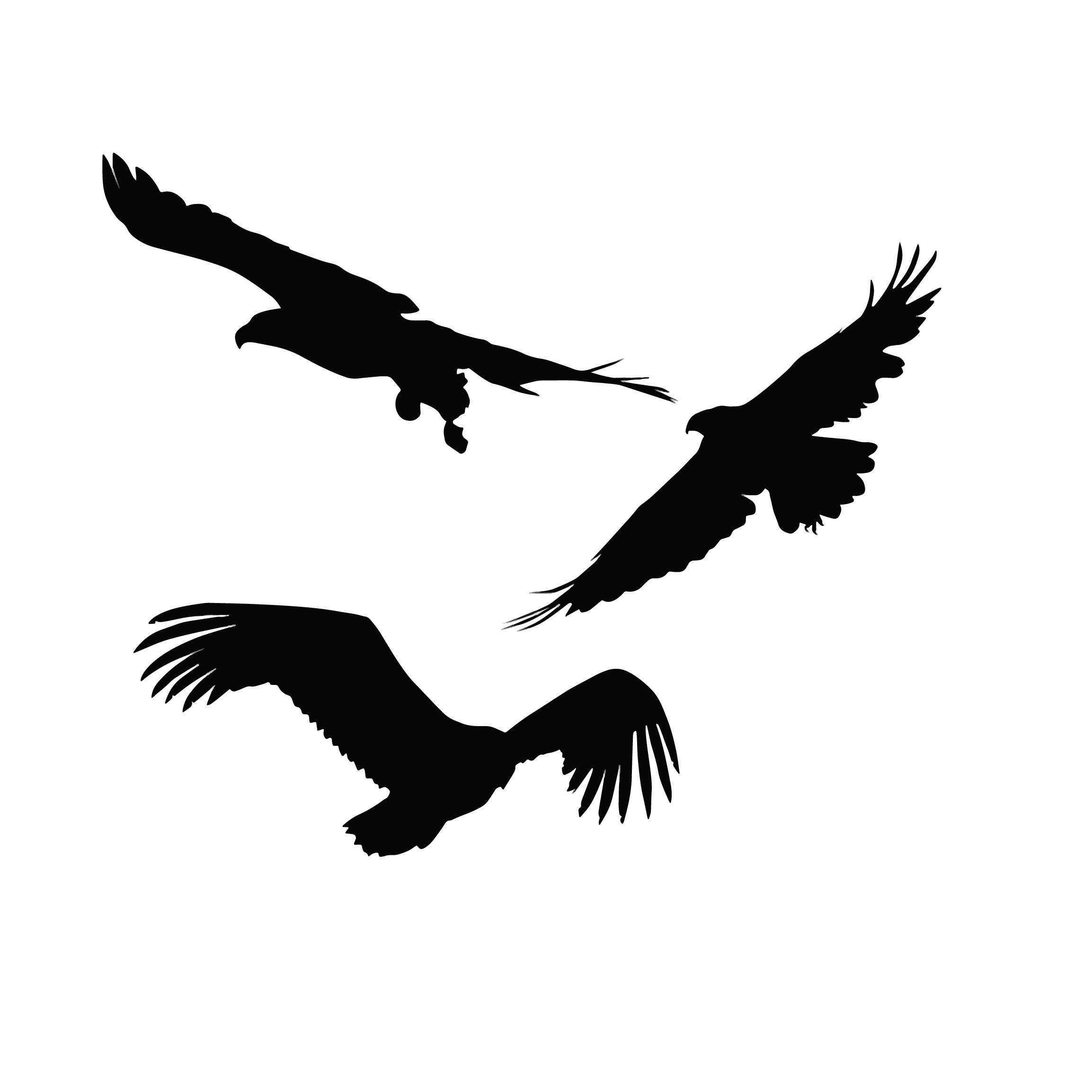 AZSG Soaring eagle Clear Stamps For DIY Scrapbooking Decorative Card making Craft Fun Decoration Supplies 10 10cm in Stamps from Home Garden