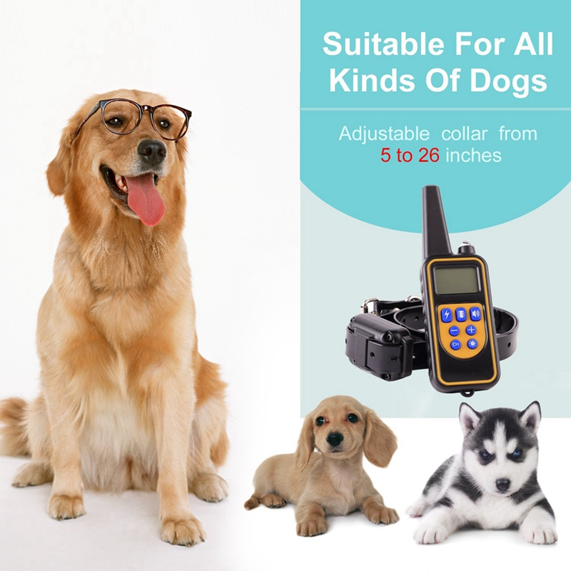 Dog Training Collar Rechargeable Anti Barking with 800 meters Remote LED Display Collar for Dog Outdoor Control Trainer