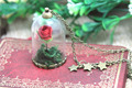 12pcs/lot The Little Prince Rose INSPIRED Necklace  Rose  Glass Dome bronze tone chain  Le Petit Prince - fox charm