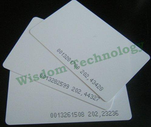 Free Shipping 200PCS/Lot Smart Card EM4100/4102 TK4100 Pvc Card 125KHZ RFID Card 200pcs lot customable 8 4mm mag stripe 2 track pvc smart card