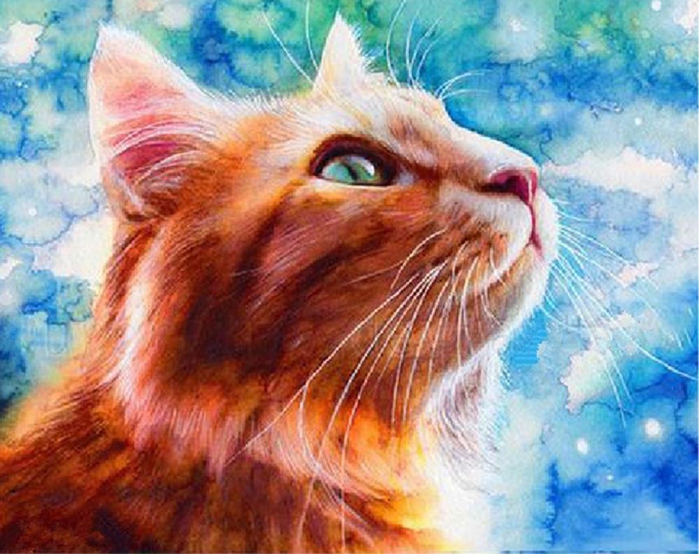 5d diy diamond painting cat animales rhinestones embroidery cross stitch diamond embroidery cats diamond picture mosaic painting