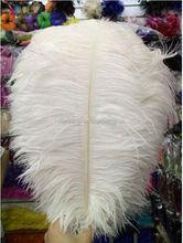 Grossist! 50PCS / mycket vita strutsfjädrar 10-12 tum / 25-30 cm naturlig fjäder, DIY bröllopsinteriörer