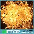 30M/300leds 110V/220V RGB/White/Warm White Flashing LED String Fairy Light Holiday Lights 8Modes for Christmas/Party/Wedding