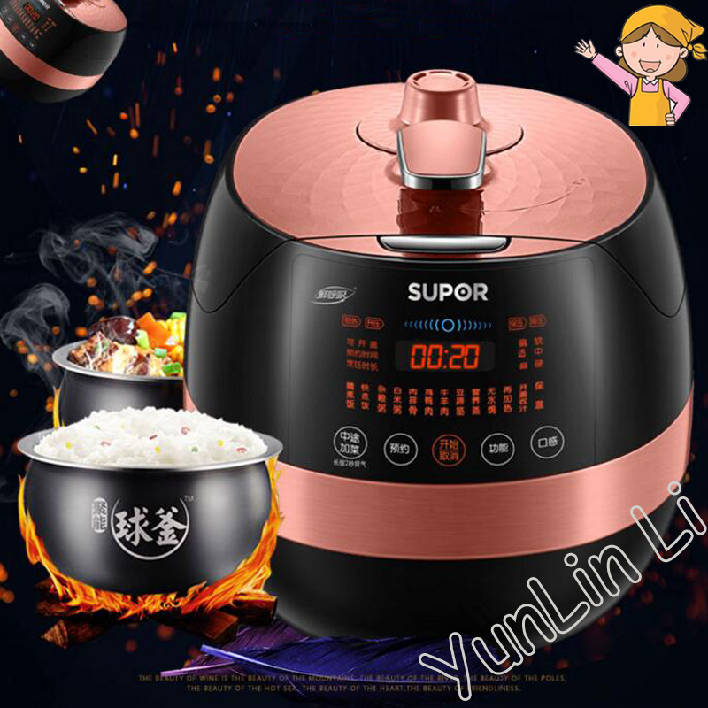 5L Electric Pressure Cooker Household Intelligent Cooker Memory Microcomputer Pressure Cooker With 2 Container free shipping gz25a mini 2 5 l electric pressure cooker