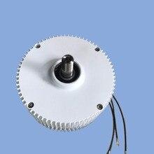 300 Вт 12 В/24 В pmg могут быть выполнены по индивидуальному заказу генератора с постоянными магнитами фабрики