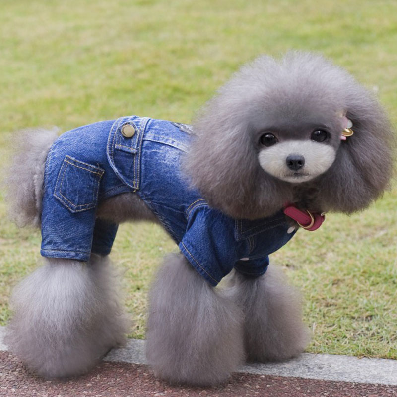 2016 winter pet dog clothes fashion denim thick warm cashmere dog coats Casual style Four-legged dog clothes
