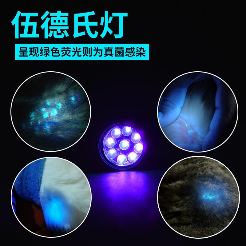WOOD's Lamp Fungus Test Lamp Light Skin Ultraviolet Light Cat Dog Moss Tinea Light UV Flashlights Pets Urine And Stains Detector