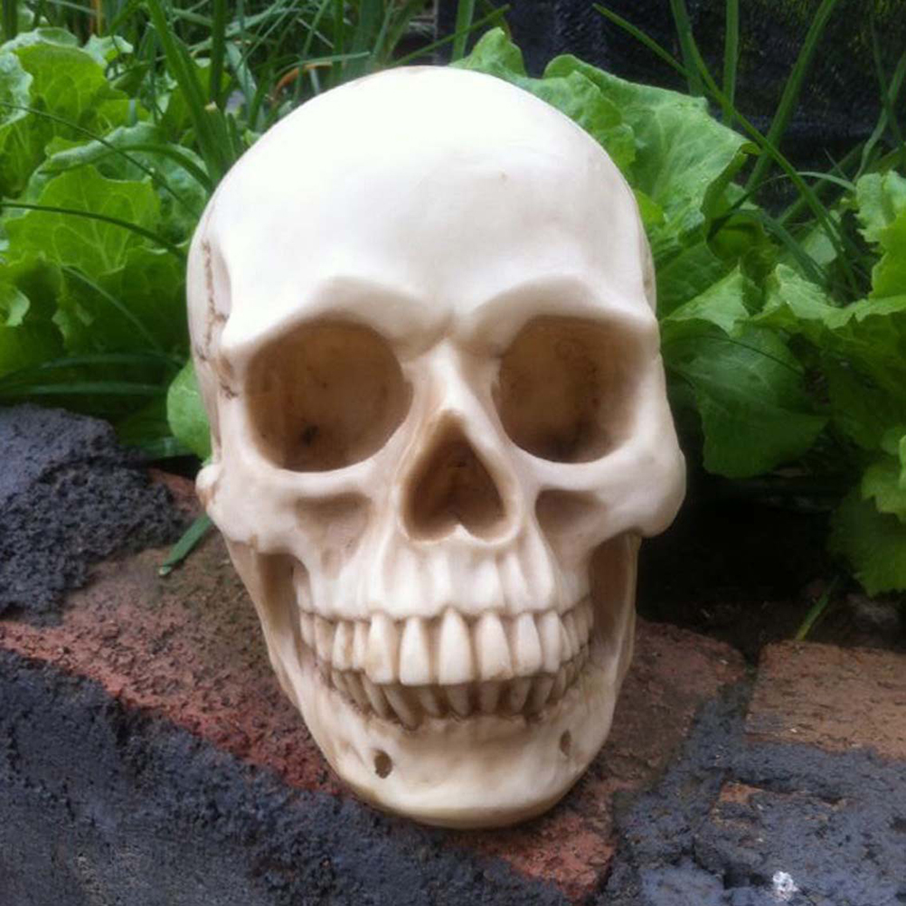 bucky skeleton human skull life size halloween props decorative craft skull home decoration crystal reiki - Cheap Halloween Props