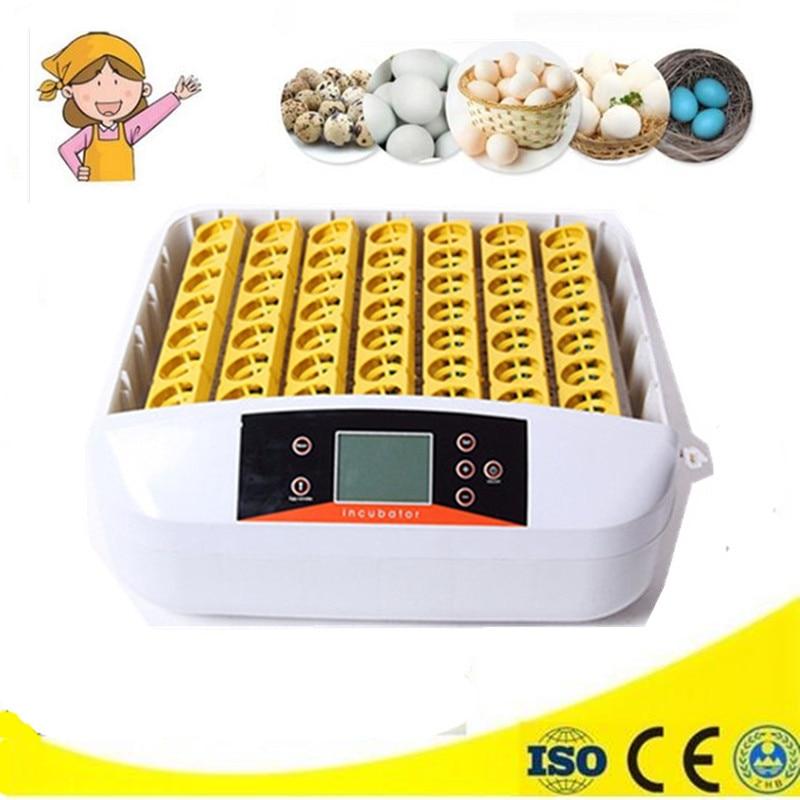 все цены на Household Commercial Automatic Chicken 56 Eggs Digital Clear Incubator Turning Hatcher Incubation Tools Supplies онлайн