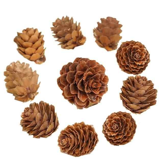 20PCS Wooden Natural Pinecone Christmas Tree Hanging DIY 3D Vivid Pine Cones Ornaments Party Christmas Decor Home Decors 22